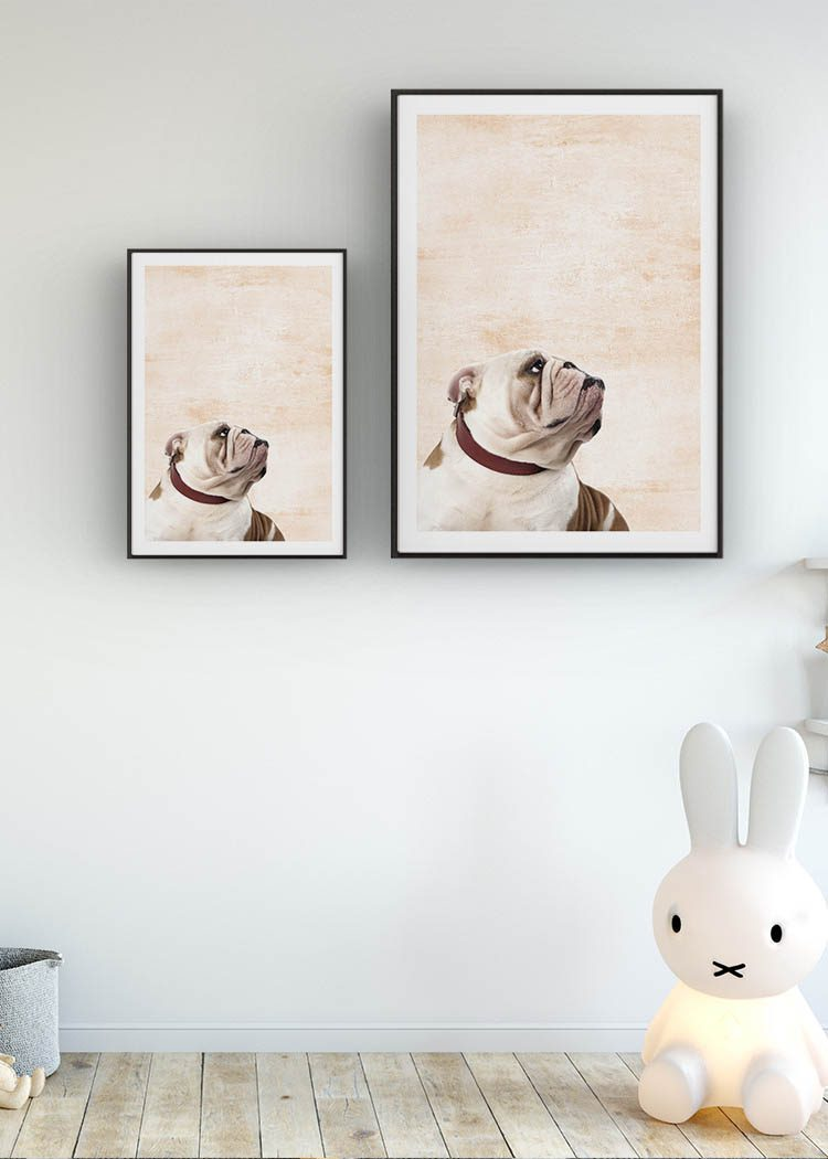 Bulldog posters in childs chamber with rabbit lamp and beautiful wooden floor