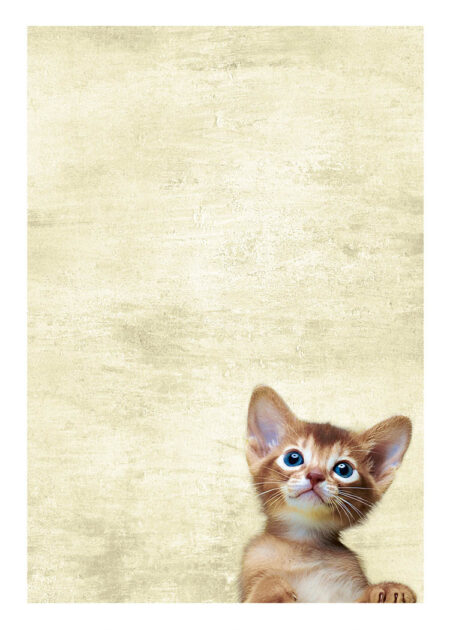 Cute kitten with blue eyes and beige and brown fur, looking upwards with paws on the poster's passepartout