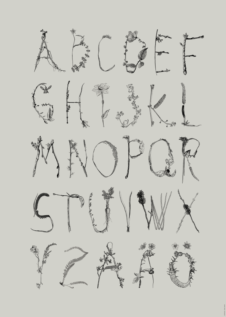 ABC poster with letters made of illustrated leaves, twigs and flowers