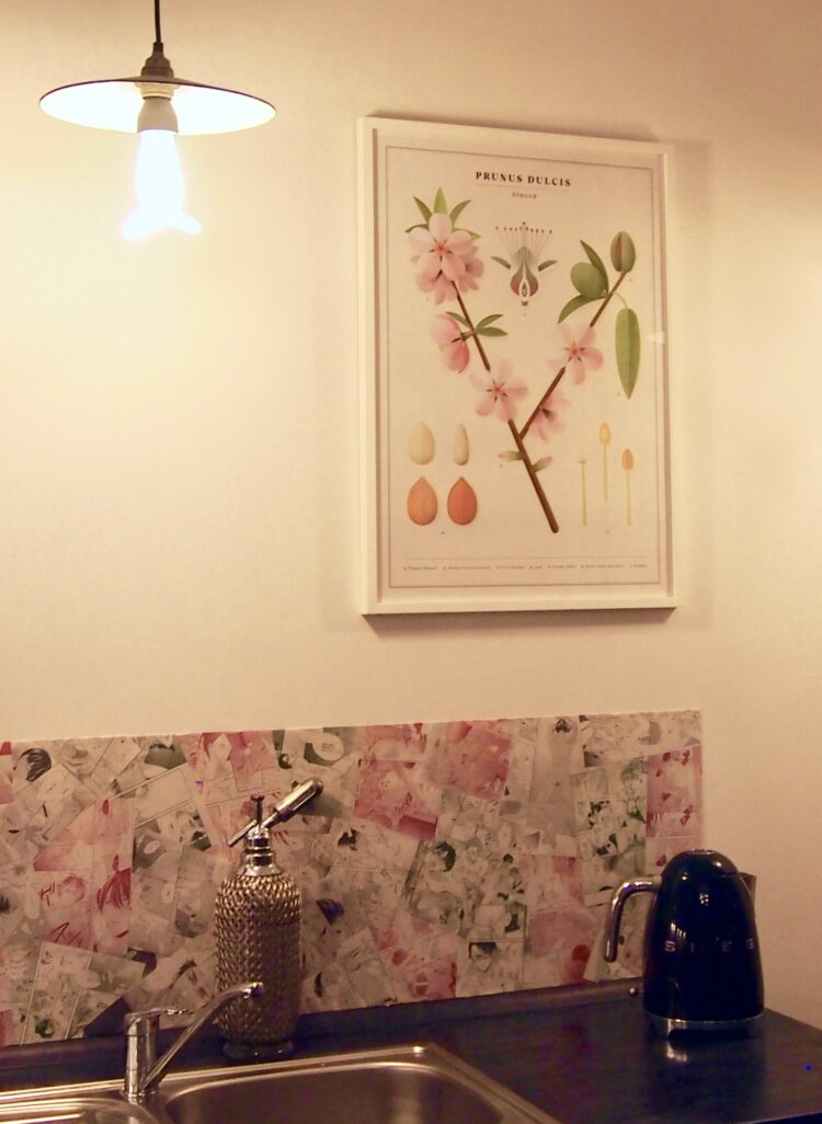 Almond poster in kitchen in Berlin by Bernie P