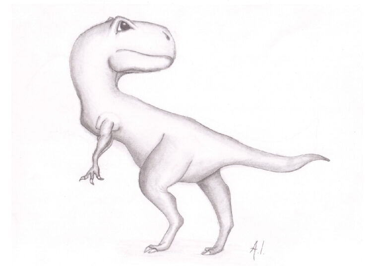 Pencil drawing of dinosaur like Tyrannosaurus rex on white background