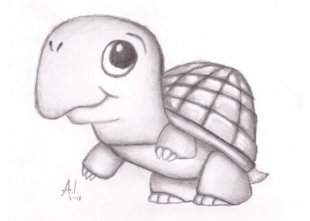 Pencil drawing of baby turtle with big eyes