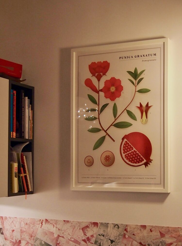 Pomegranate poster in kitchen in Berlin by Bernie P