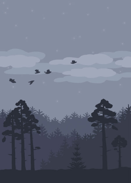 Forest landscape with pines and birds