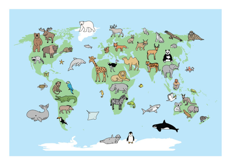 Animal World poster with bear, raccon, elk, eagle, whale, giraffe, hippo, and more